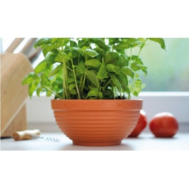 Vaso Taça Misa Plástico Terracota - 20 cm