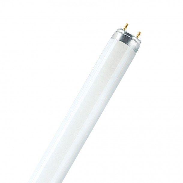 Lâmpada Fluorescente Osram Tubular T8 G13 18W 6500K